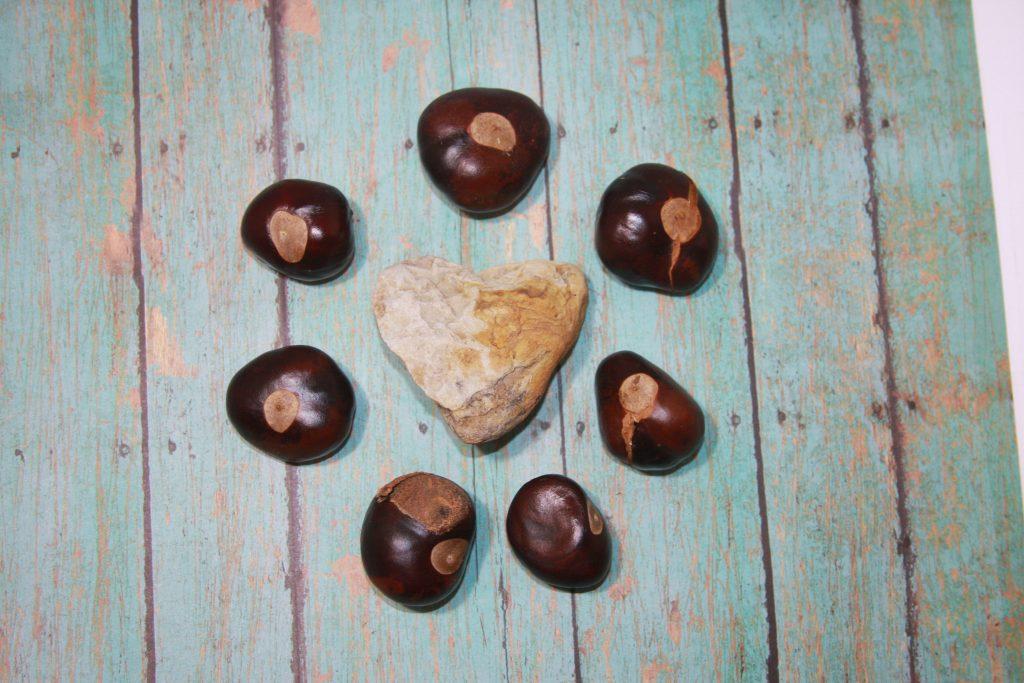 Heart Shaped Rock Buckeyes