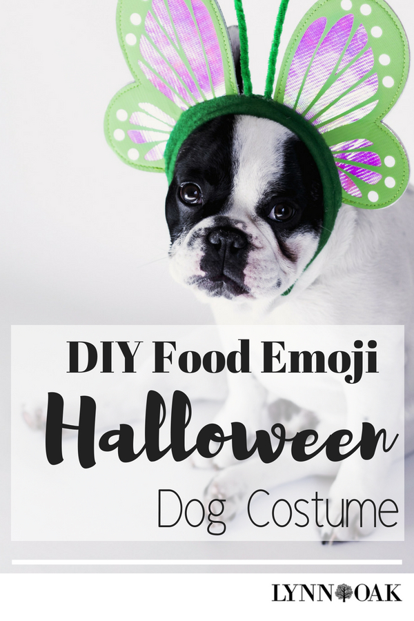 DIY Food Emoji Halloween Dog Costume