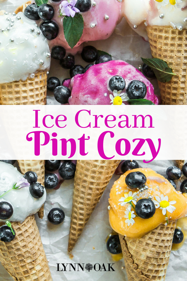 Ice Cream Pint Cozy