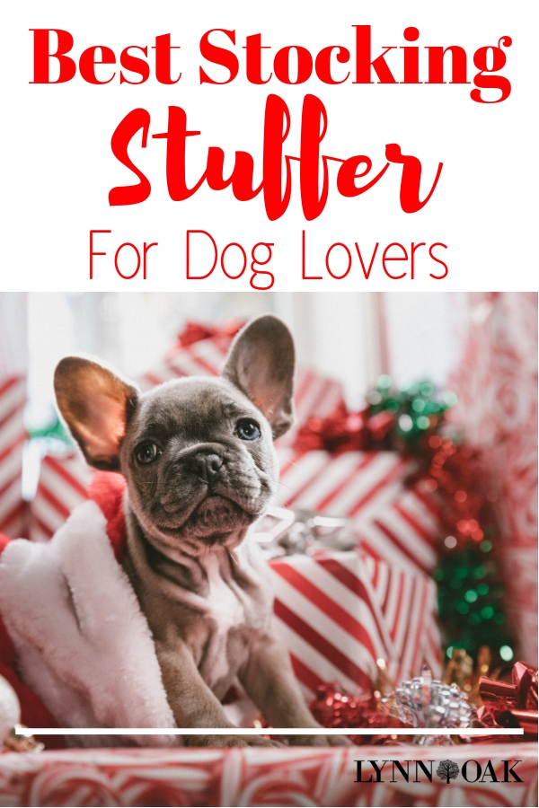 Best Stocking Stuffer For Dog Lovers
